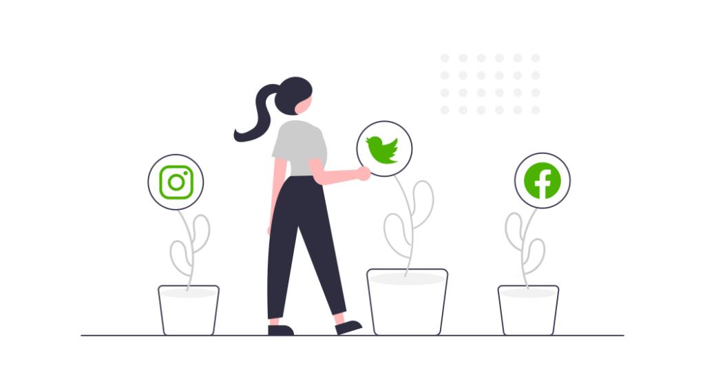 Social Media & SEA
